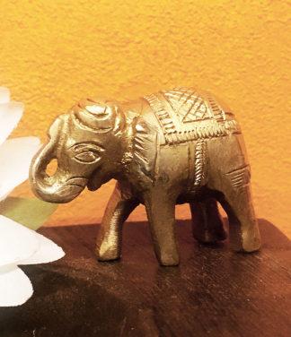Kleiner Messing Elefant Figur im Ganesha Online Shop